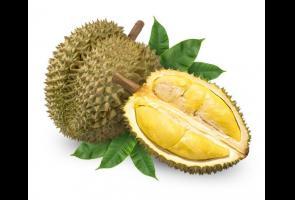 Telepon Damkar Karena Mengira Ada Kebocaran Gas,Ternyata Bau Durian