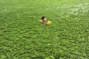 Efek Polusi Dan Limbah Yang Mengerikan Di China